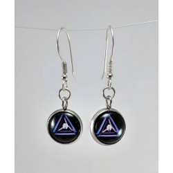 Ingress Link Amp Earrings